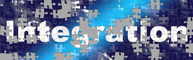 Puzzle Integration