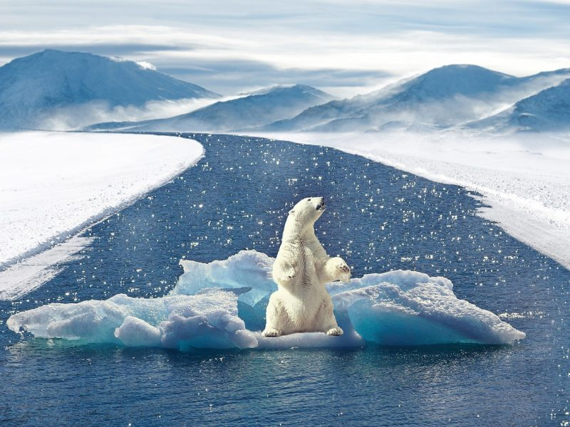 Klimawandek
