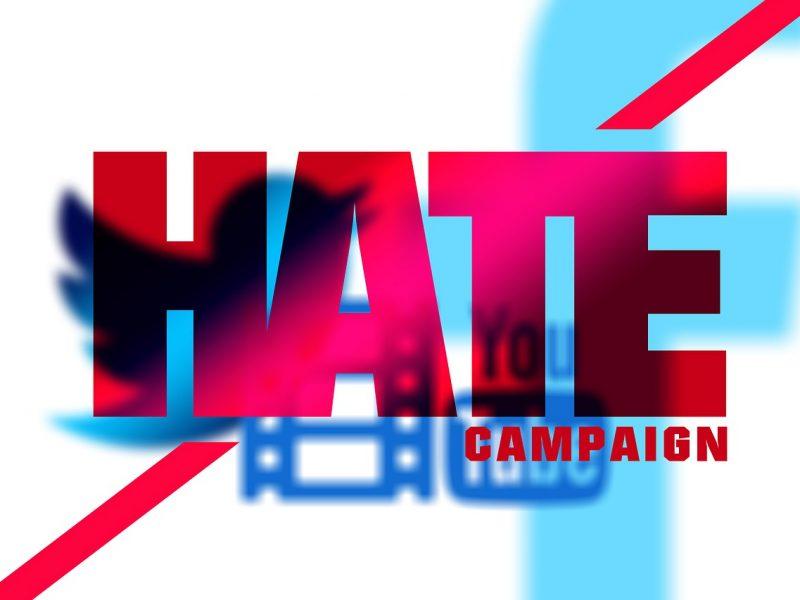 Hass - das Programm der AfD