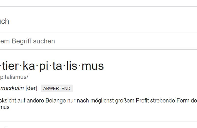Screenshot Google zu Raubtierkapitalismus