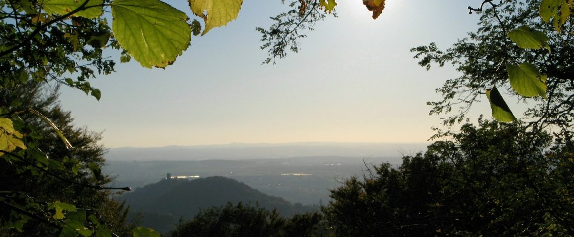 Ölberg bei Königswinter