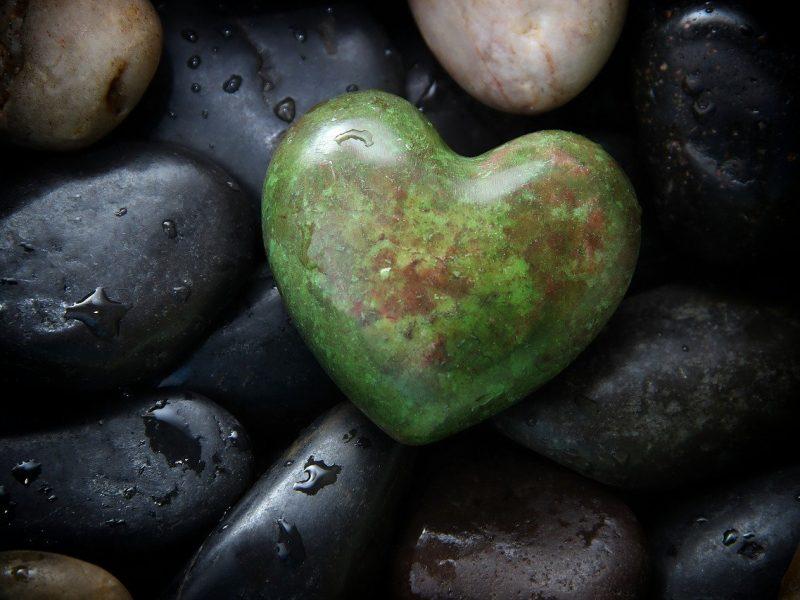 schwarz-grün - Symbolbild