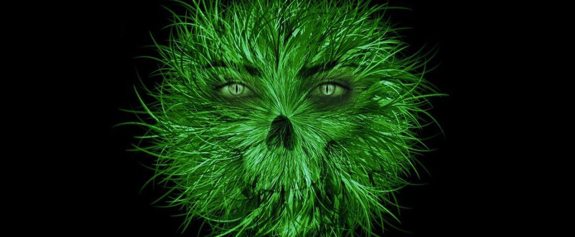 Grünes Monster (nicht Armin Laschet)