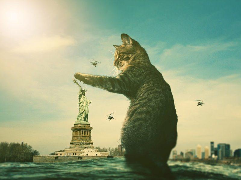 Bürgerkrieg USA - Fantasiebild