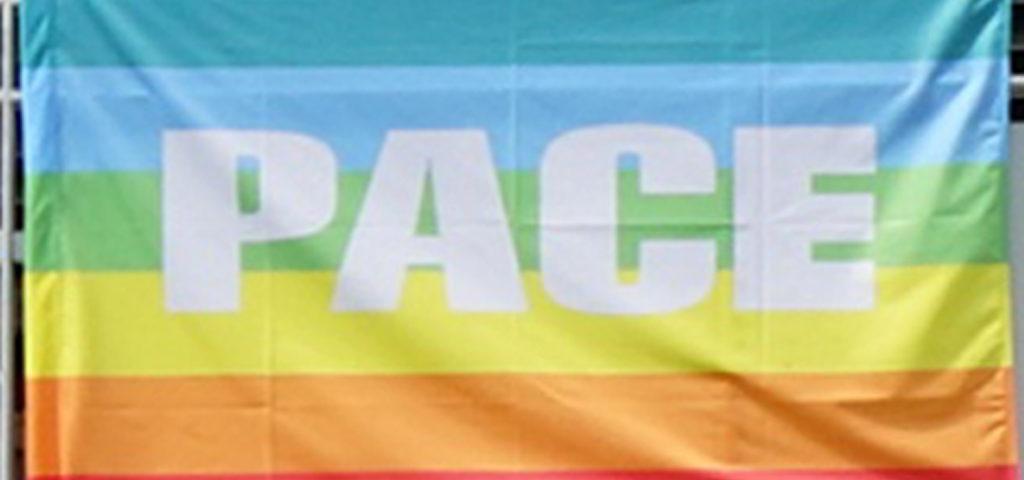 """Fahne """"Pace"""""""