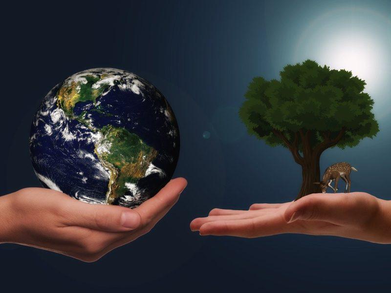 Klimaschutz für die nächste Generation - Symbobild