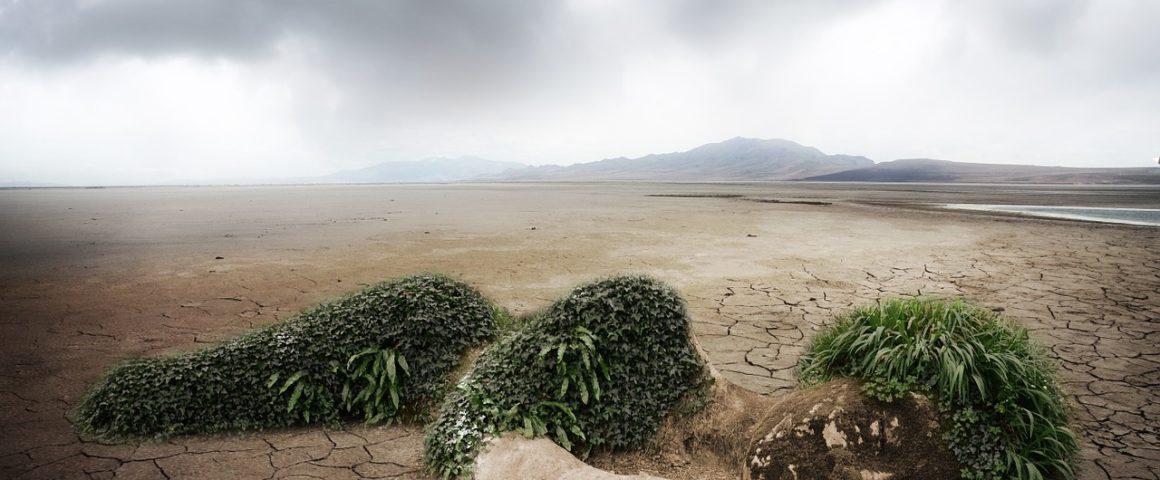 Klimawandel und Verantwortung - Symbolbild