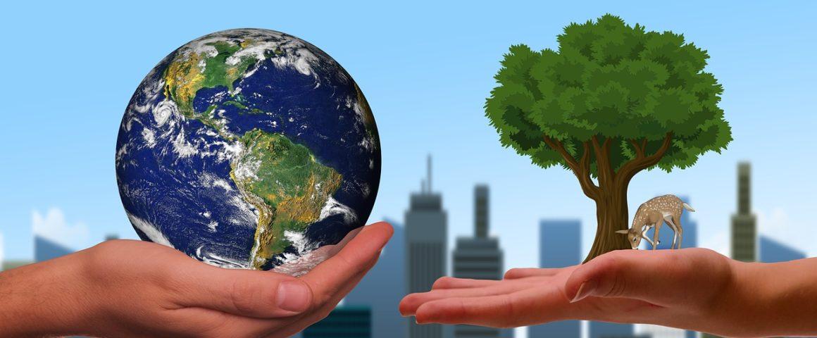 Klimawende - Symbolbild